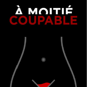 a-moitié-coupable-damienne-houehougbe-