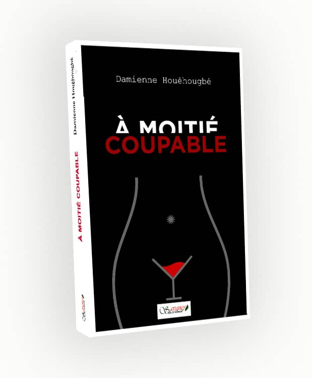 a-moitie-coupable-damienne-h